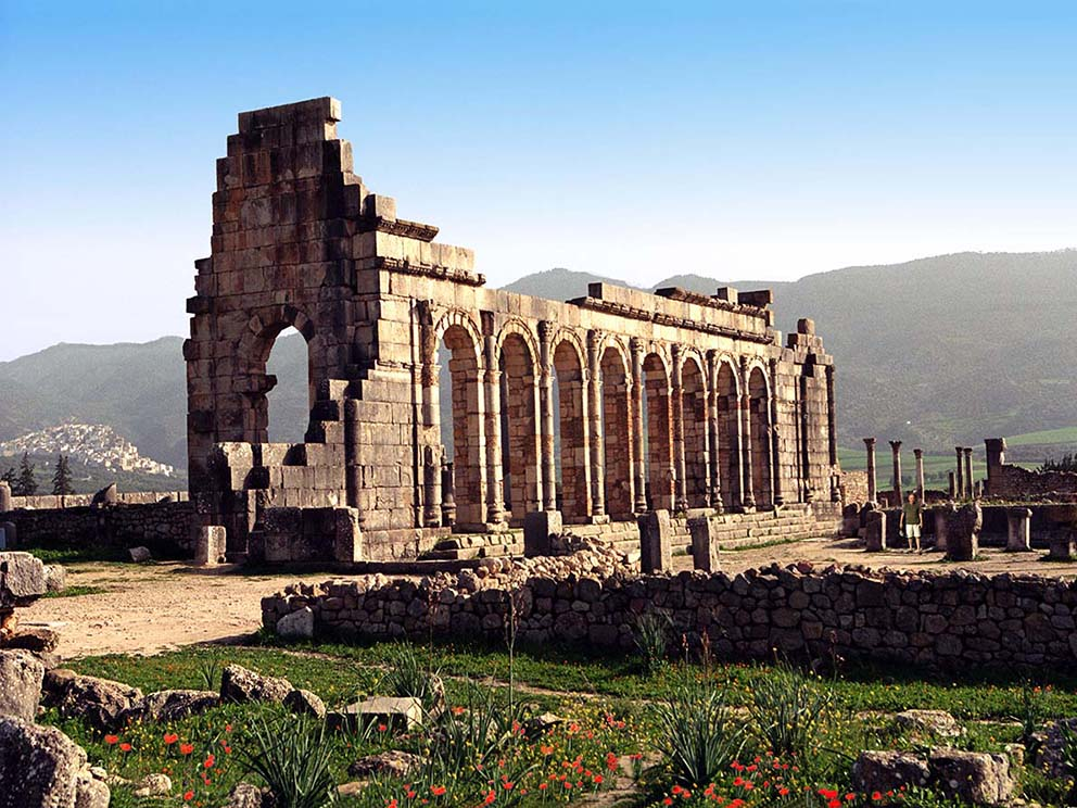 VOLUBILIS NB00 HD